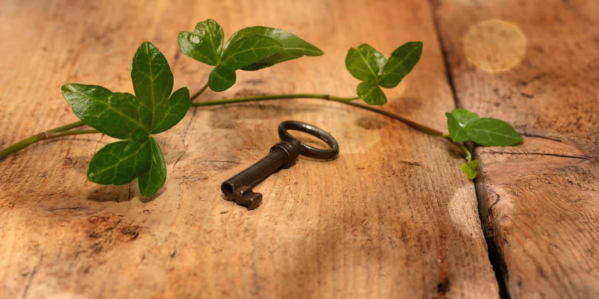 Crafting the Key That Unlocks Life