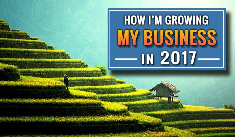 How I'm Growing My Business in 2017