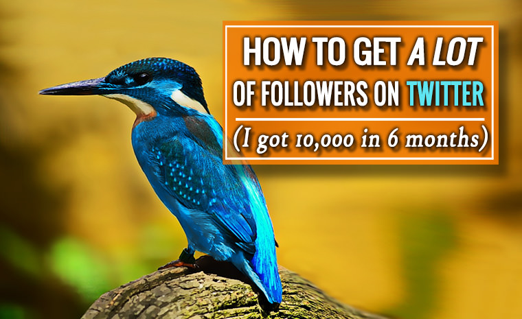 How to Get a Lot of Followers on Twitter – 10,000 in 6 Months